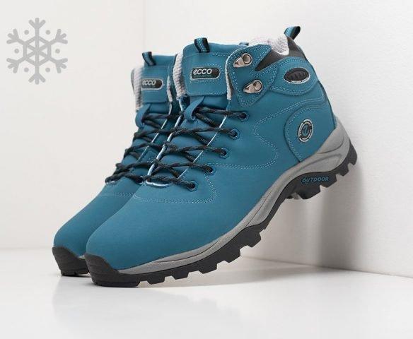 Ecco blue winter