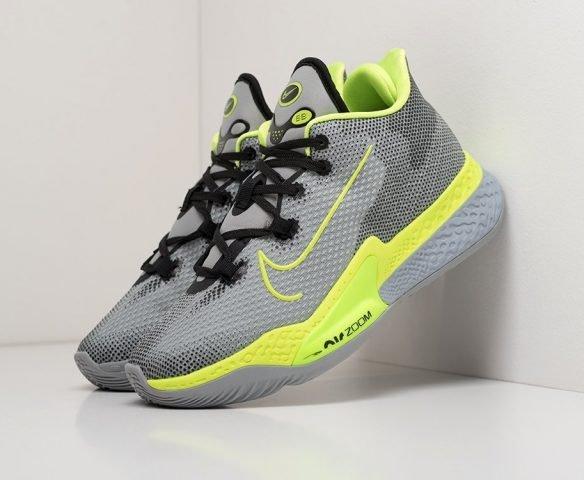 Nike Air Zoom BB NXT серые