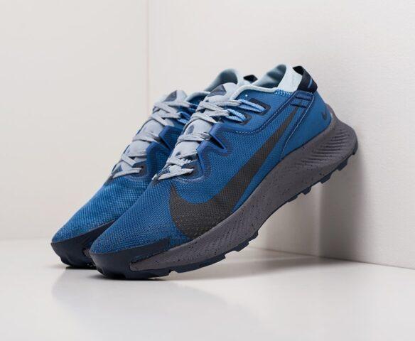 Nike Pegasus Trail 2 серые